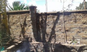Construction of the wall for the orphanage in Embu, Kenya